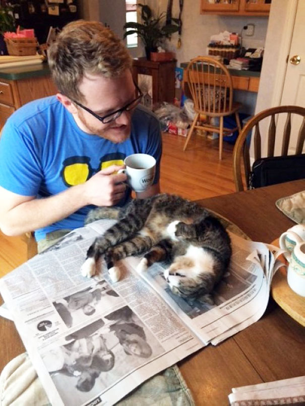 cats_who_wont_let_you_read_32