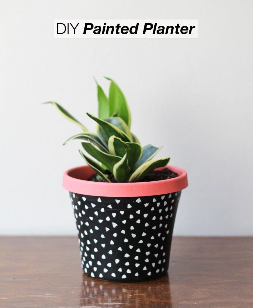 diy-painted-planter-beauty-1