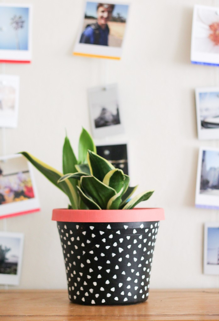 diy-painted-planter-beauty-5
