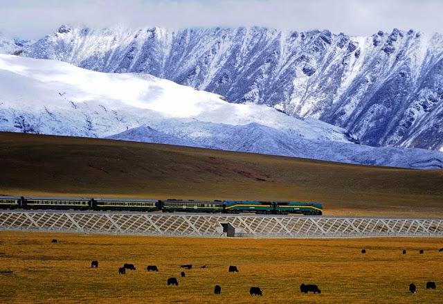 train-1638498