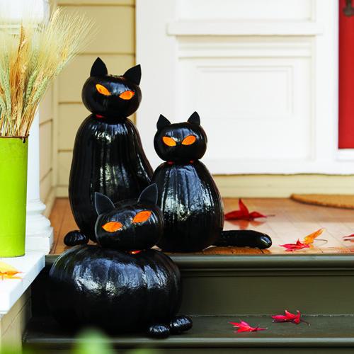 black-cat-pumpkins