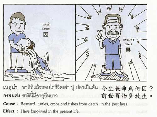 ความเชื่อเรื่อง ชาติที่แล้วชอบไถ่ชีวิตเต่า ปู ปลา เป็นต้น