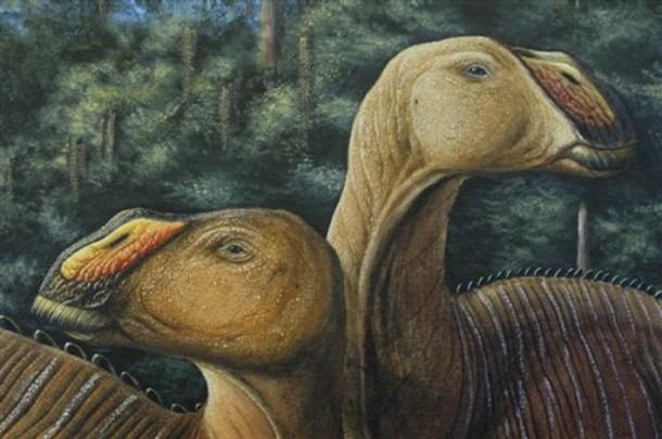 ฟอสซิลไดโนเสาร์ปากเป็ด