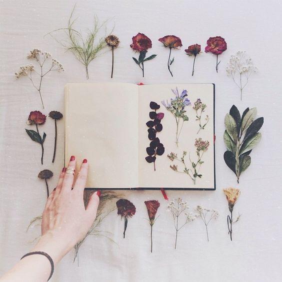 วิธีการทำ ดอกไม้แห้ง น่ารักๆ (6)