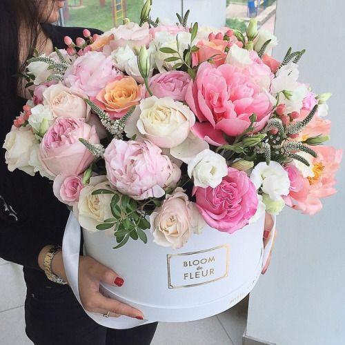 สีดอกกุหลาบกับความหมาย  !!!