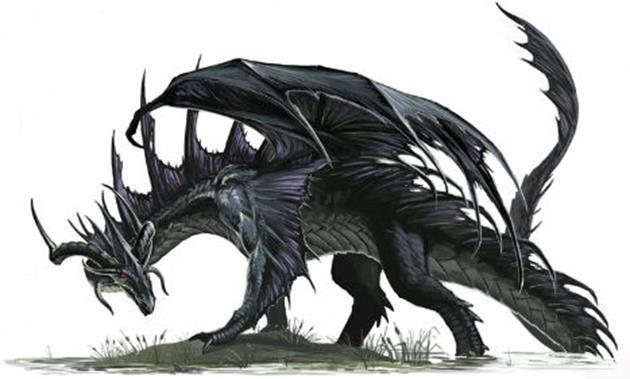 เฮบริเดี้ยนสีดำ (Hebridean Black) 10 สายพันธุ์มังกรในตำนาน - Harry Potter