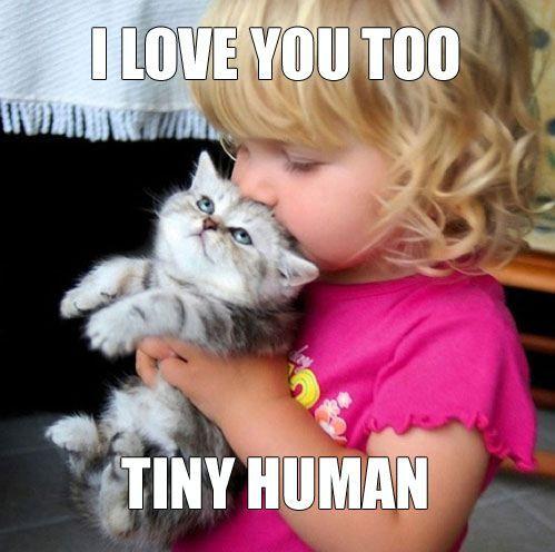 10 วิธีการที่แมวบอกรักคุณ