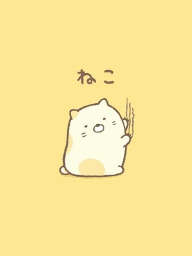 Neko (เนโกะ) แมว