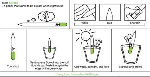 สุดยอดไอเดียรักษ์โลก! ปลูกดินสอได้ต้นไม้