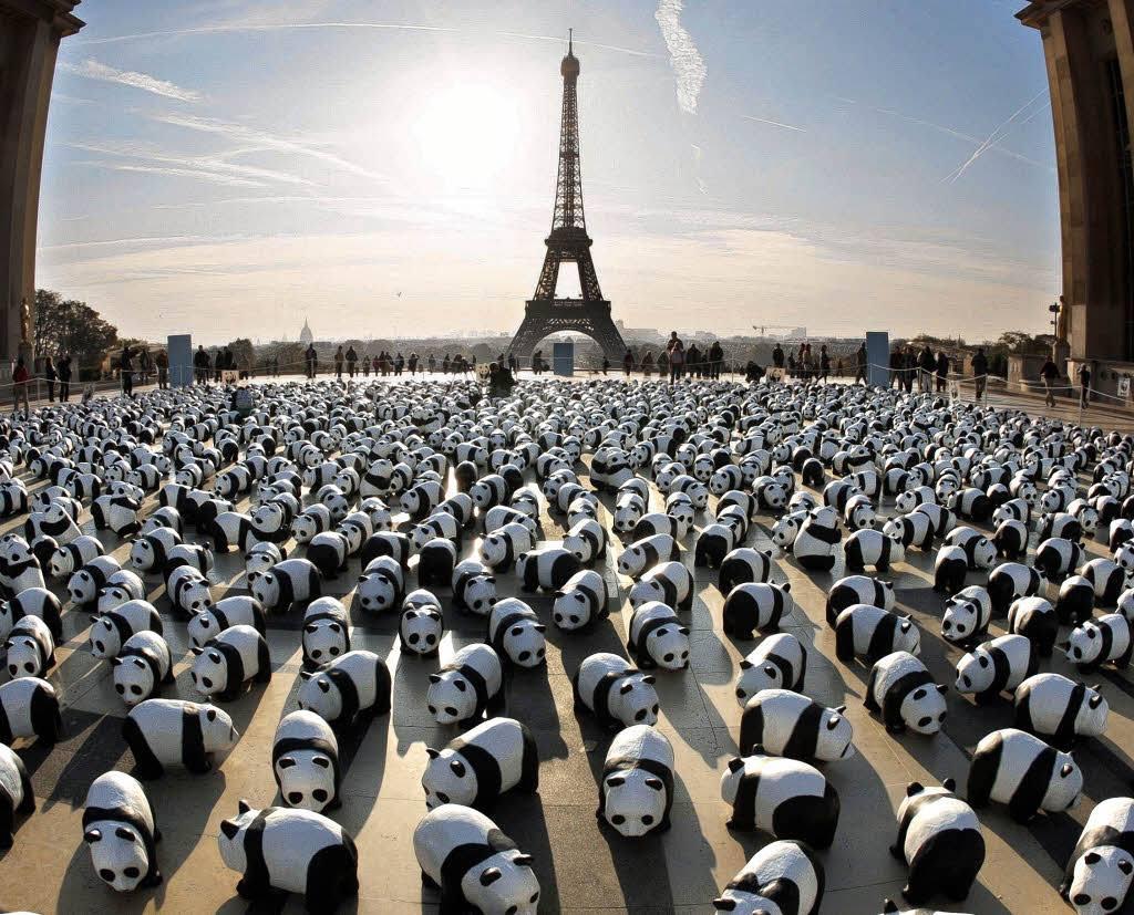 panda-france