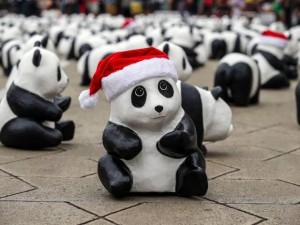 panda-santa