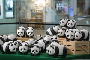 pandas-1600