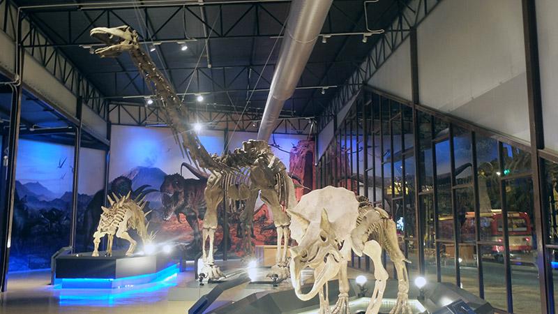 พาบุก! Dinosaur Planet สวนสนุกไดโนเสาร์สุดยิ่งใหญ่ ใจกลางมหานคร (43)
