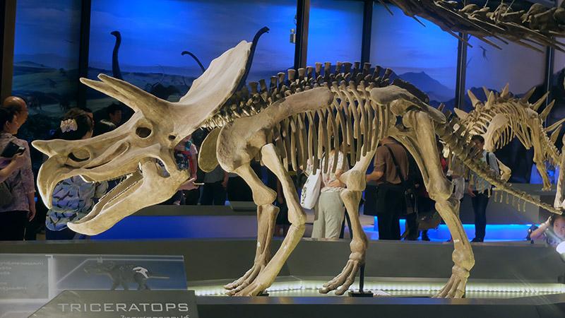 พาบุก! Dinosaur Planet สวนสนุกไดโนเสาร์สุดยิ่งใหญ่ ใจกลางมหานคร (46)