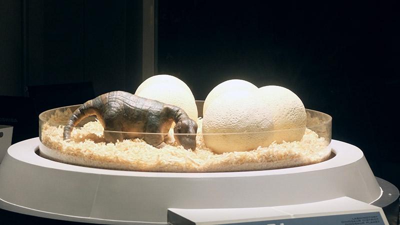 พาบุก! Dinosaur Planet สวนสนุกไดโนเสาร์สุดยิ่งใหญ่ ใจกลางมหานคร (51)