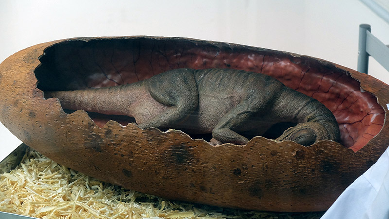 พาบุก! Dinosaur Planet สวนสนุกไดโนเสาร์สุดยิ่งใหญ่ ใจกลางมหานคร (54)