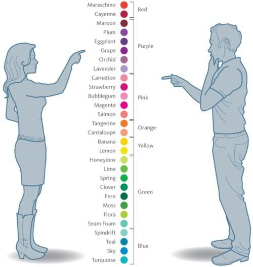 สีต่างๆ ในสายตาผู้ชายและผู้หญิง