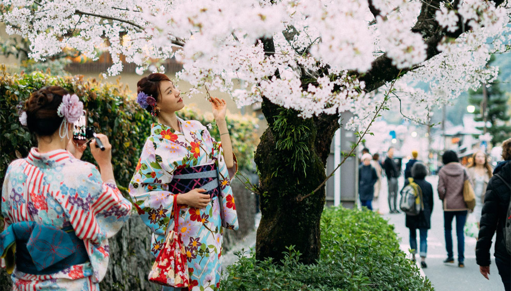 Kimono ชุดกิโมโน ญี่ปุ่น