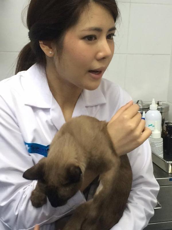 หมอแนน สัตวแพทย์คนสวย รพ.สัตว์ทองหล่อ แจ้งวัฒนะ #คุณหมอสวยบอกต่อ (3)