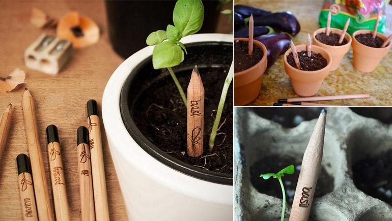 Idea ดินสอ ต้นไม้ สิ่งแวดล้อม