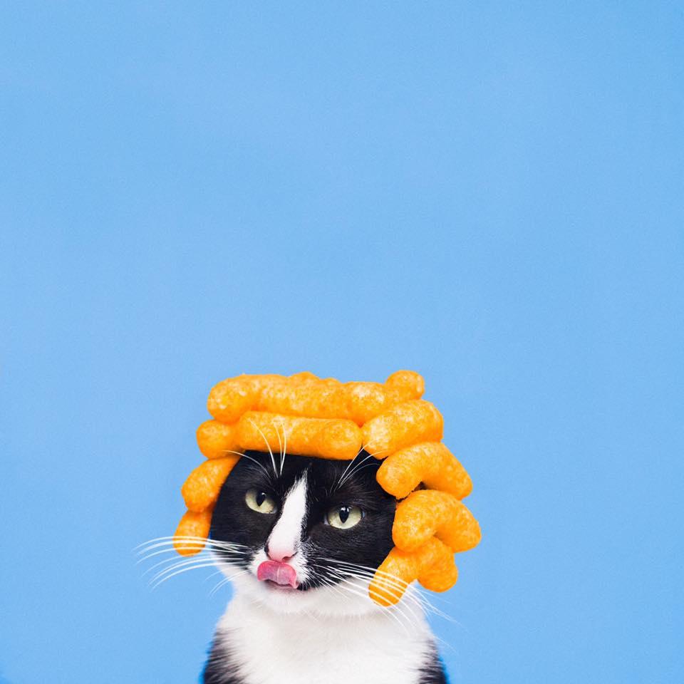 Princess Cheeto