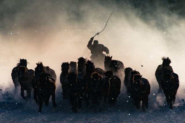 GRAND PRIZE WINNER ; Winter Horseman Photo by Anthony Lau