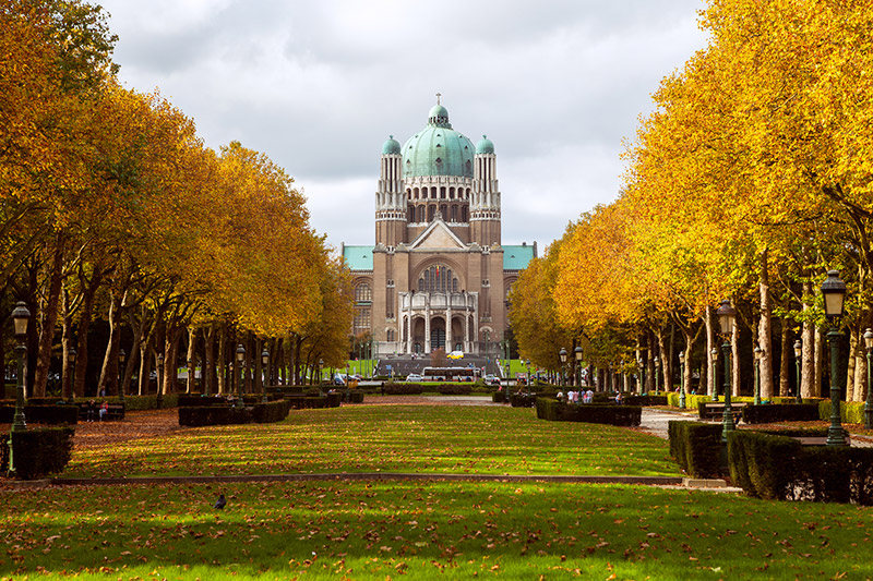 เที่ยวยุโรป ใบไม้เปลี่ยนสี