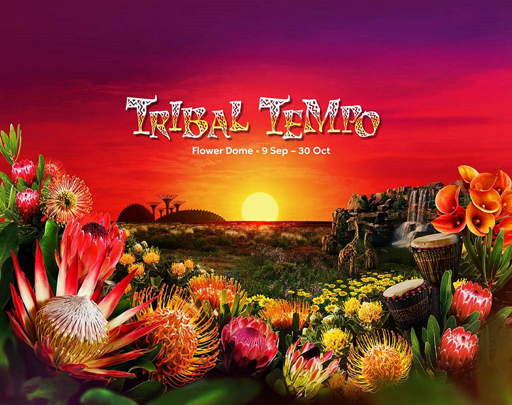 Tribal-Tempo_FLower-Dome