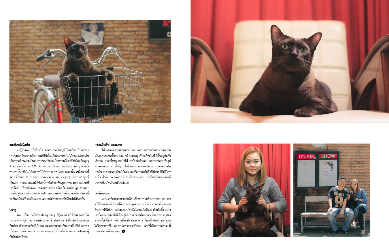 how-cat-cover2