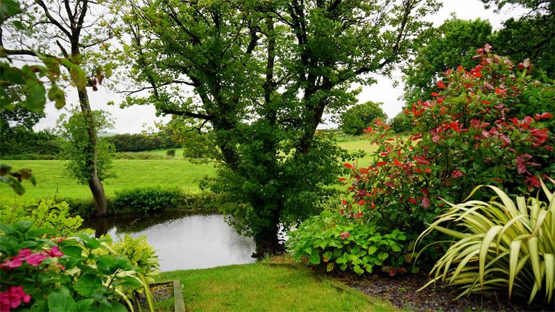 การดูแลสวนหน้าฝน