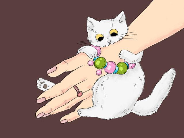 ภาษากาย สัตว์เลี้ยง แมว