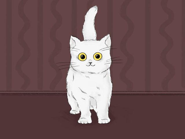 ภาษากายแมว