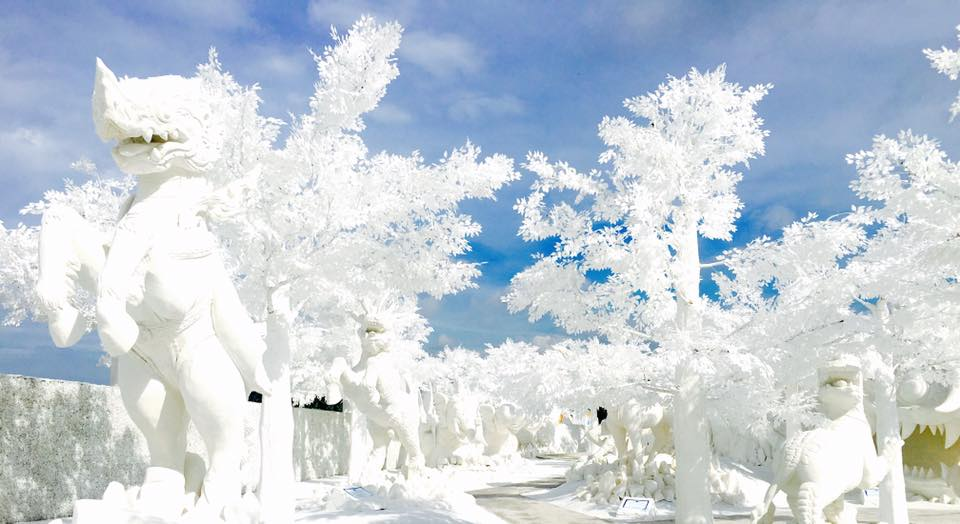 Frost Magical Ice of Siam (2)