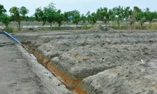 โครงการแกล้งดิน