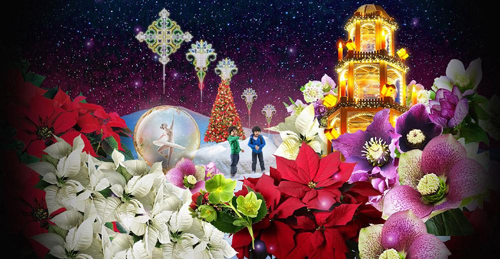 Merry-Medley2