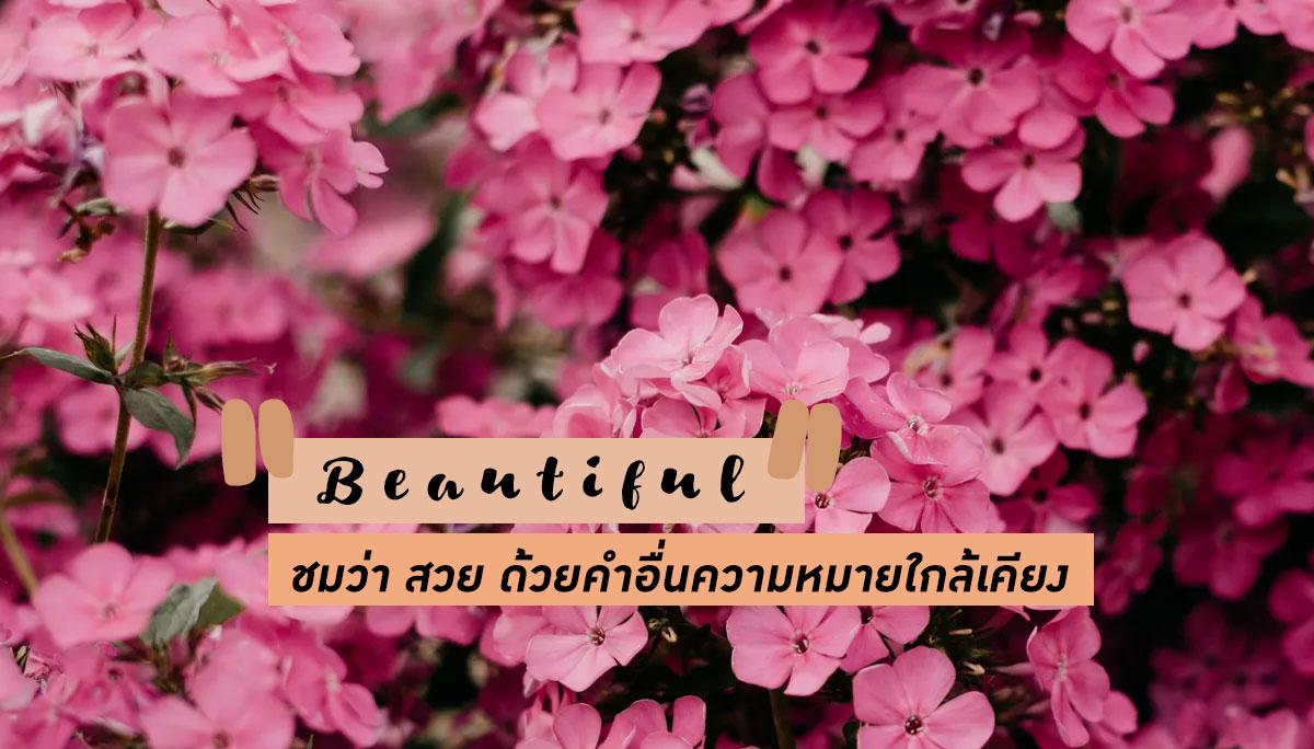 คำศัพท์ภาษาอังกฤษ สวย เรียนภาษาอังกฤษ