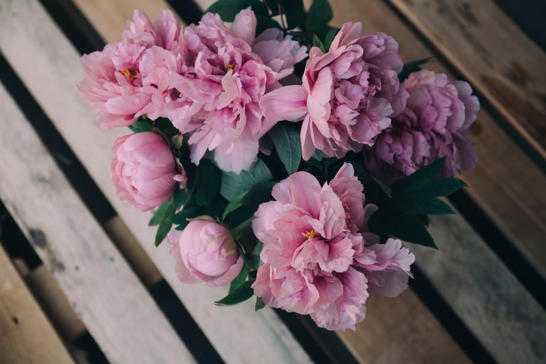 flowers-nice-05