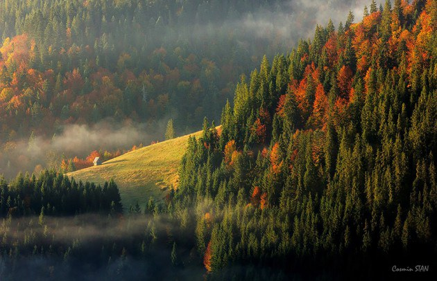 17. ภาพภูเขา Apuseni