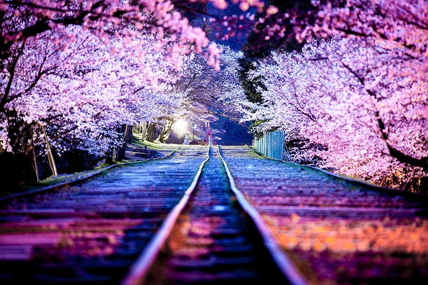 ภาพถ่ายแนวสตรีทจากญี่ปุ่น