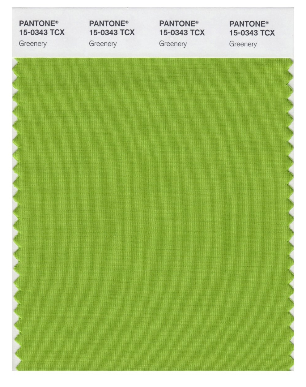 """This image released by Pantone shows a color swatch called """"greenery"""", which has been named as the color of the year for 2017 by the Pantone Color Institute. The vibrant green with yellow undertones is an answer, of sorts, to bruising 2016, signaling a yearning to rejuvenate, and to reconnect to both nature and something larger than oneself, said Laurie Pressman, the institute's vice president. (Pantone via AP)"""