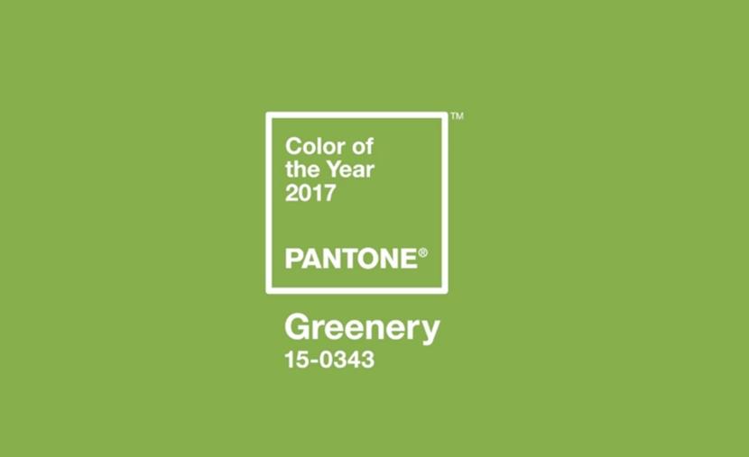 Color of the year 2017 GREENERY สีเขียว แฟชั่นสี 2017