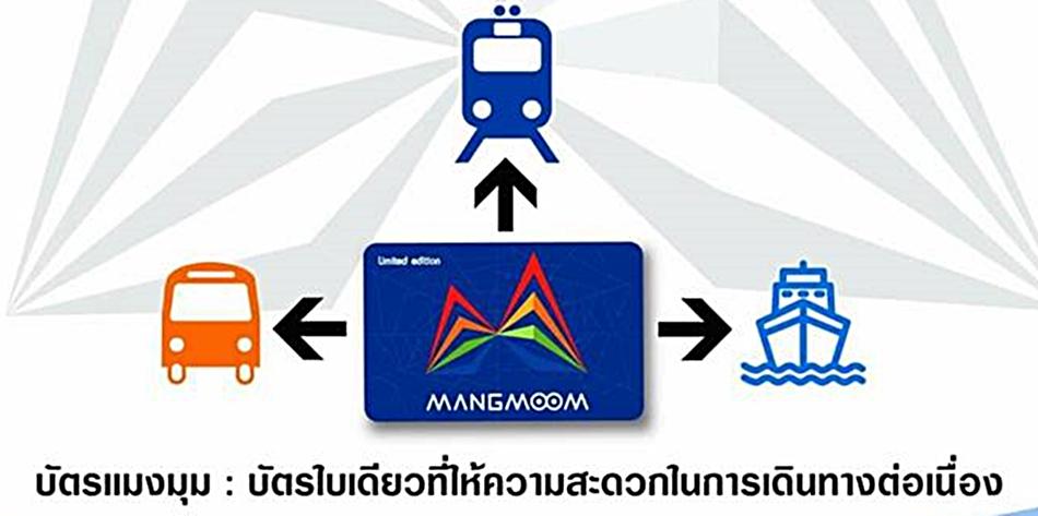 บัตรแมงมุม บัตรโดยสาร