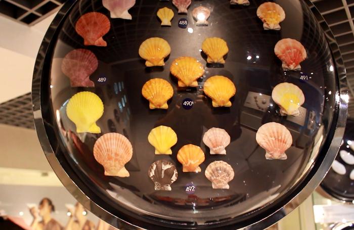 พิพิธภัณฑ์เปลือกหอย กรุงเทพ