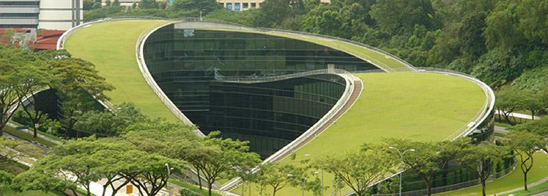 มหาวิทยาลัย Nanyang Technological University