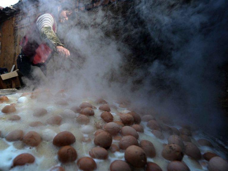 ไข่ต้มปัสสาวะ