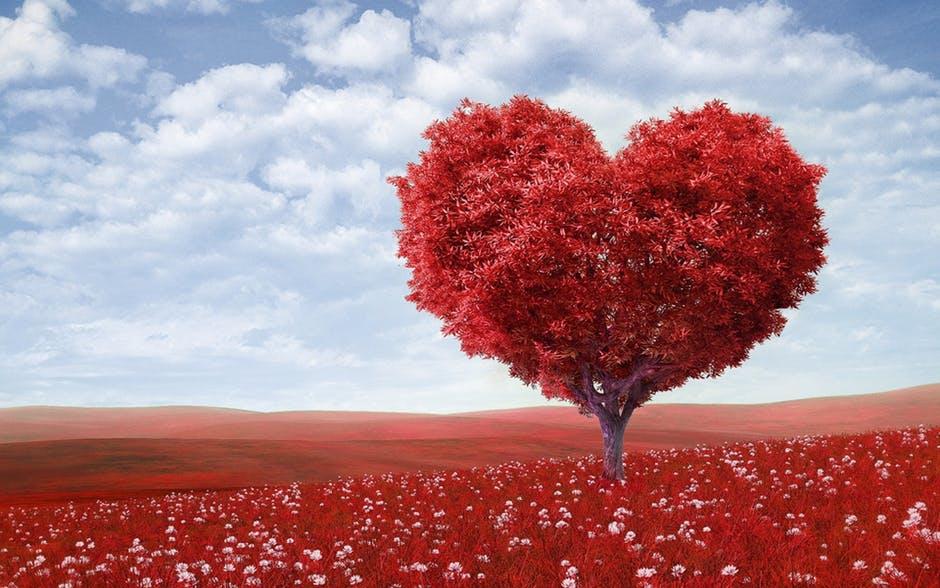 การจีบ ความรัก เรียนภาษาอังกฤษ