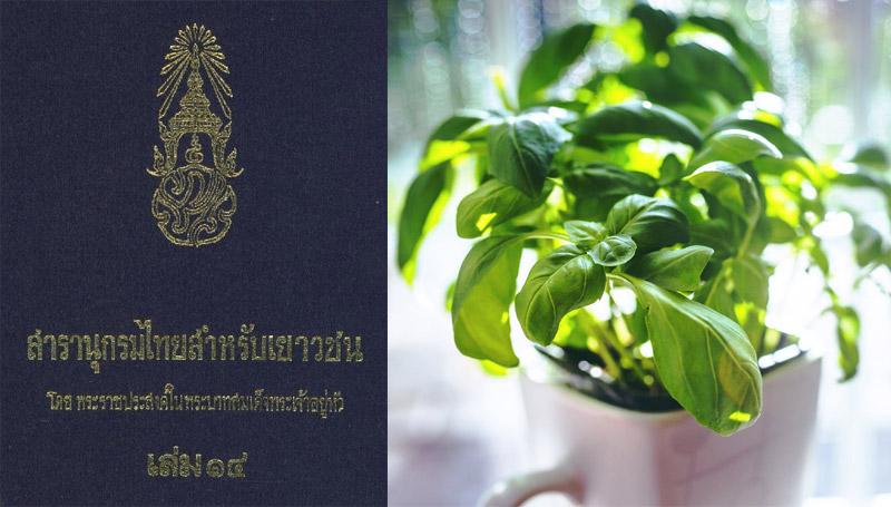 สารานุกรมไทย ในหลวงรัชกาลที่ 9