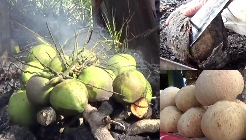 กรรมวิธี ผลไม้ มะพร้าว มะพร้าวเผา สมัยก่อน โบราณ