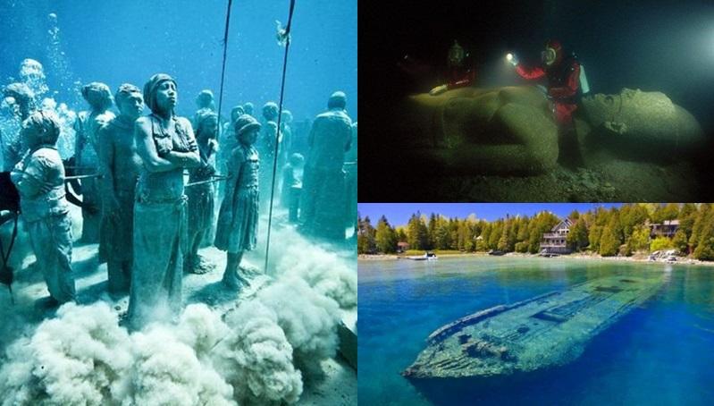 มหาสมุทร โลกใต้น้ำ