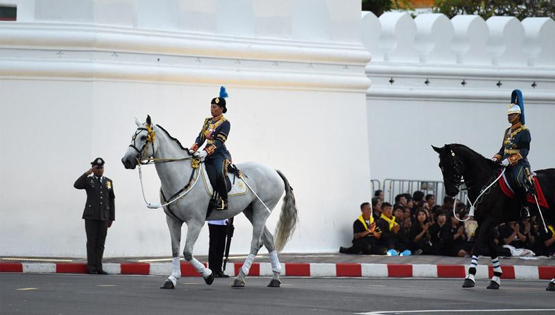ม้าทรงประจำพระองค์ฯ พระองค์หญิงสิริวัณณวรีนารีรัตน์
